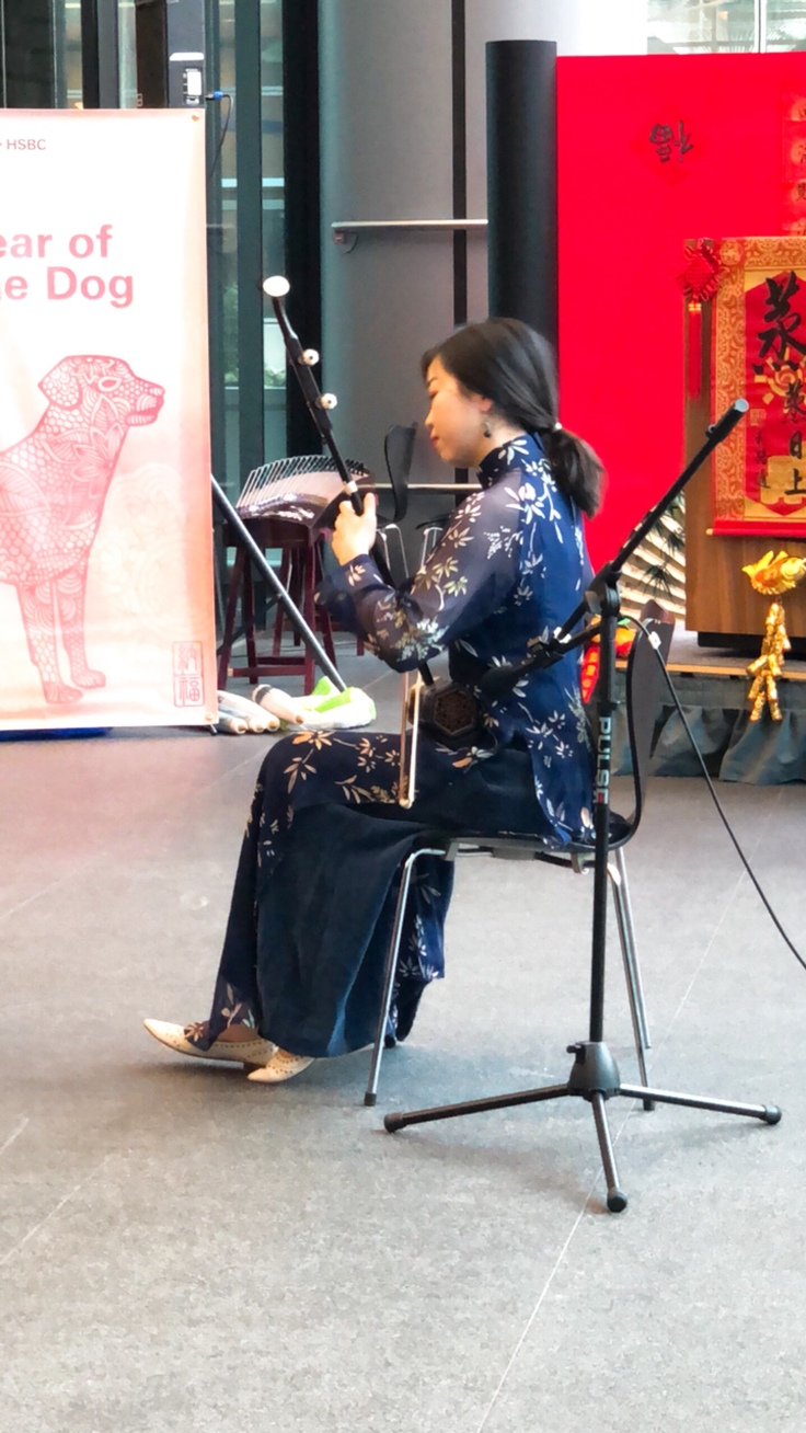 Erhu Traditional Musical Instrument, Chinese New Year Celebrations. Year of the dog