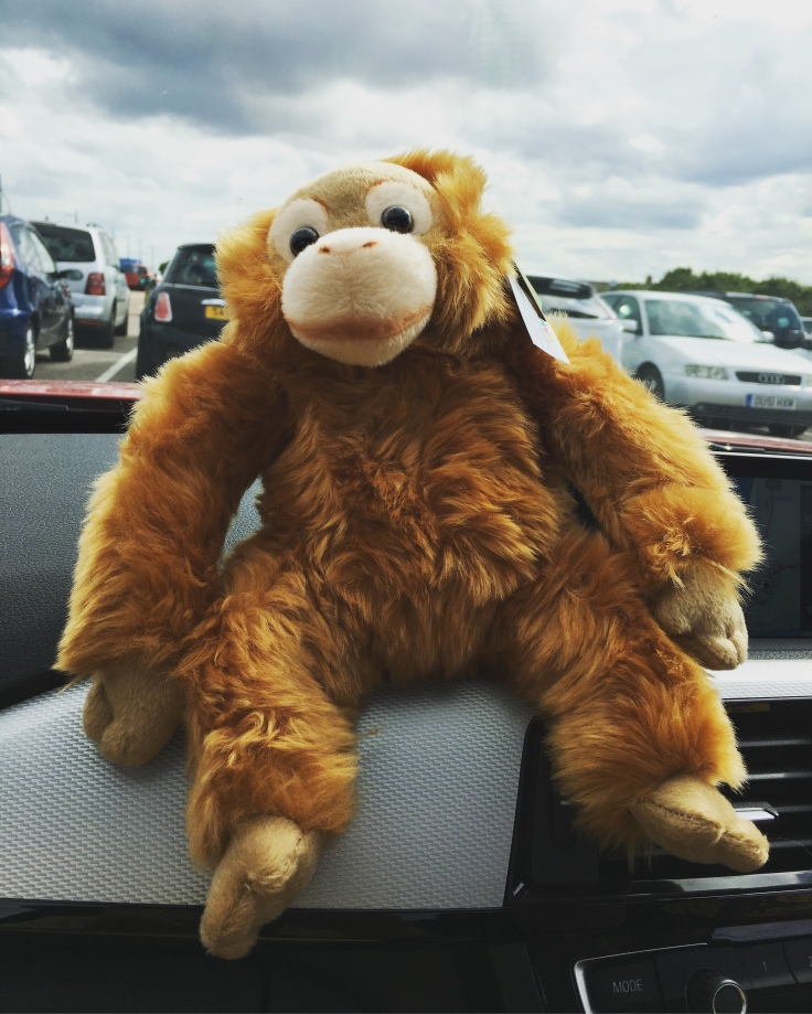 Cheeky stuffed monkey, our winnings at the arcade in Great Yarmouth, Road trip to Norfolk