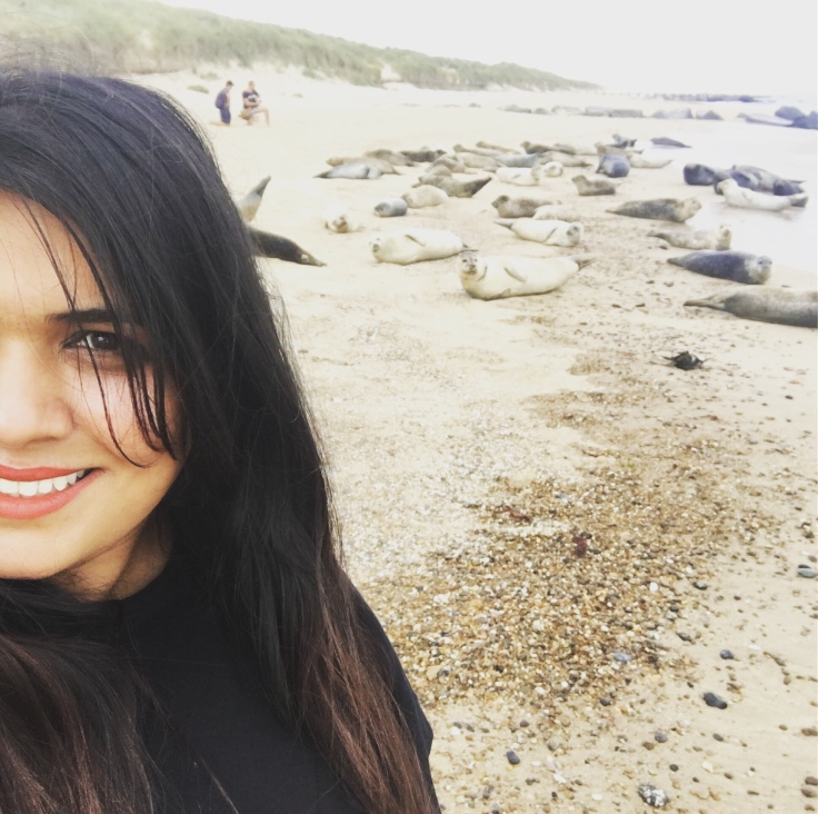 There's always time for a seal-fie :P, Horsey Beach, Norfolk coastal Road Trip